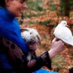 Tryllestøv kanin og due